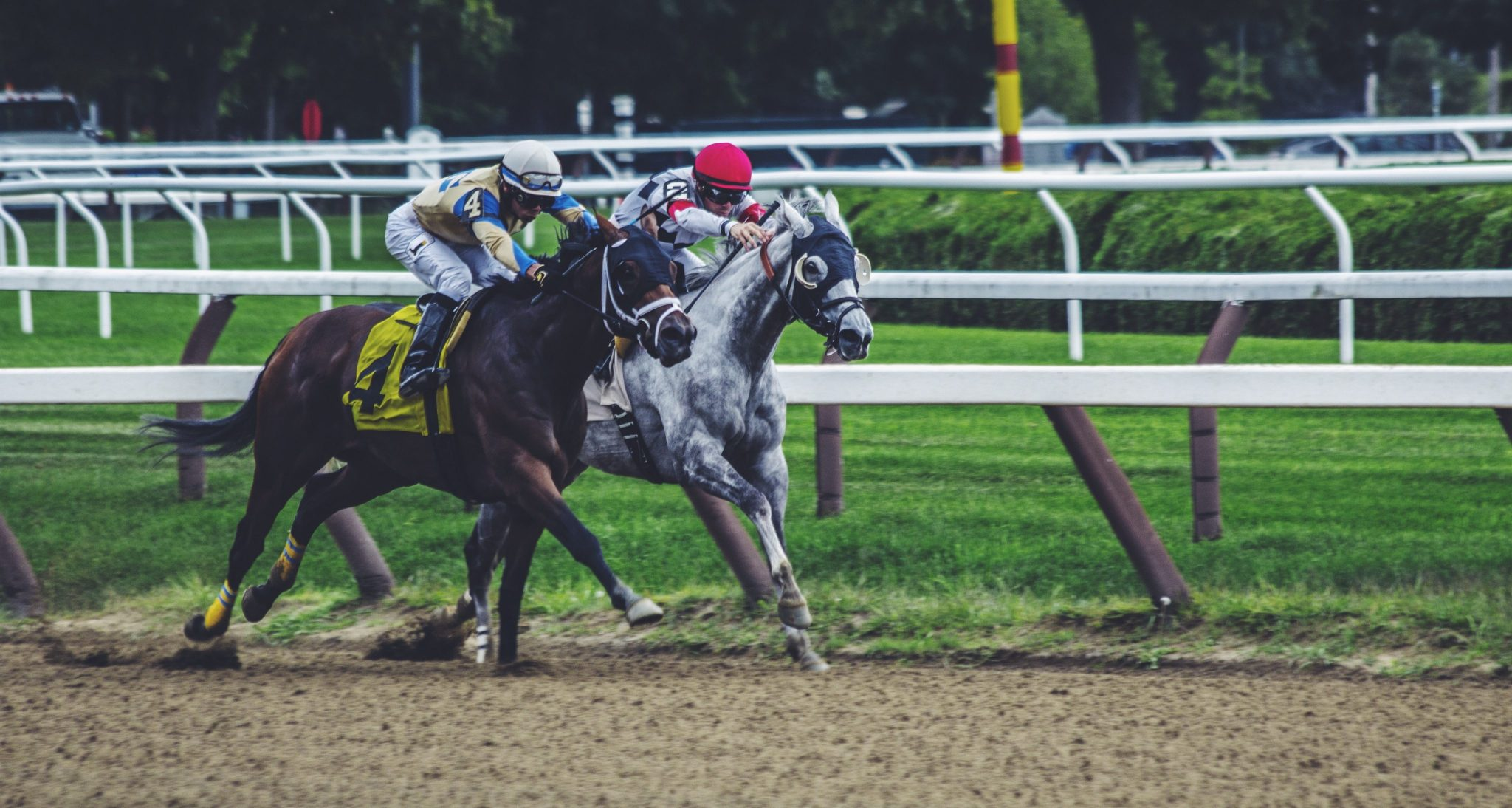 Tennessee Horse Betting